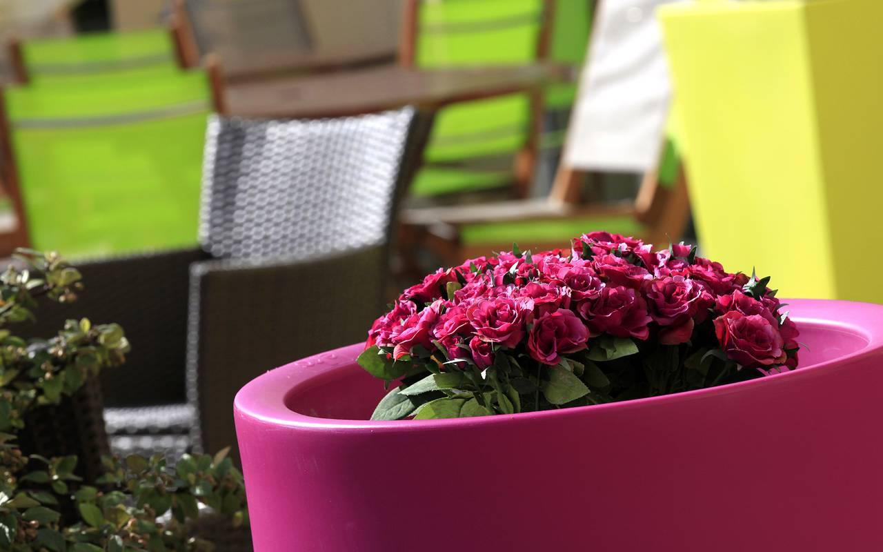 flowers terrace issoire