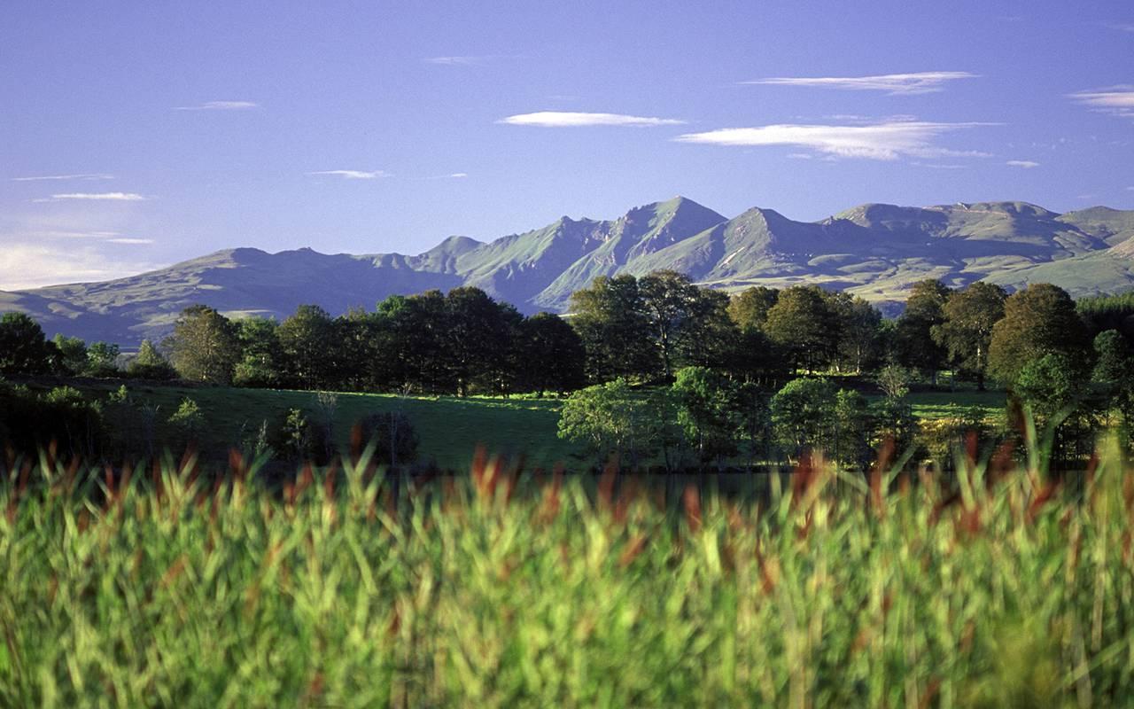 landscape nature mountain auvergne
