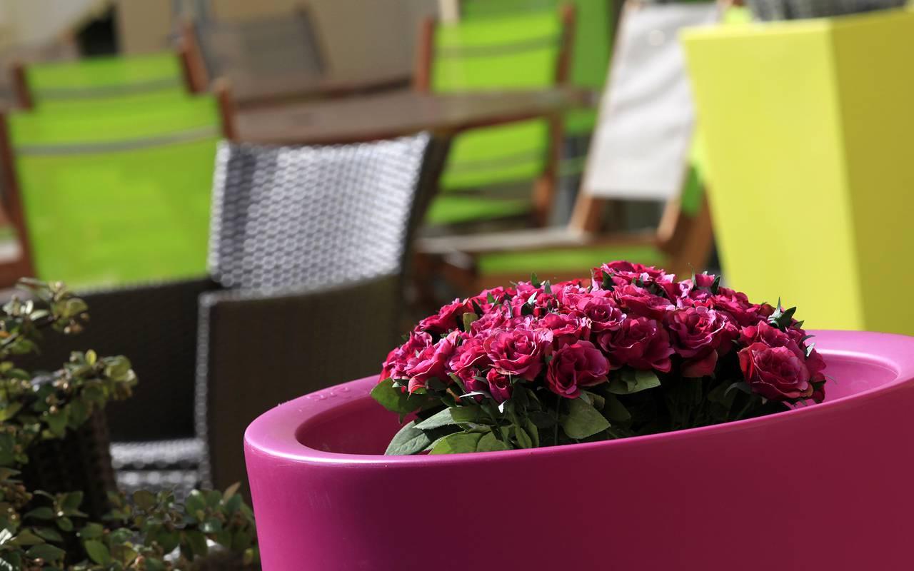 fleur auvergne terrasse