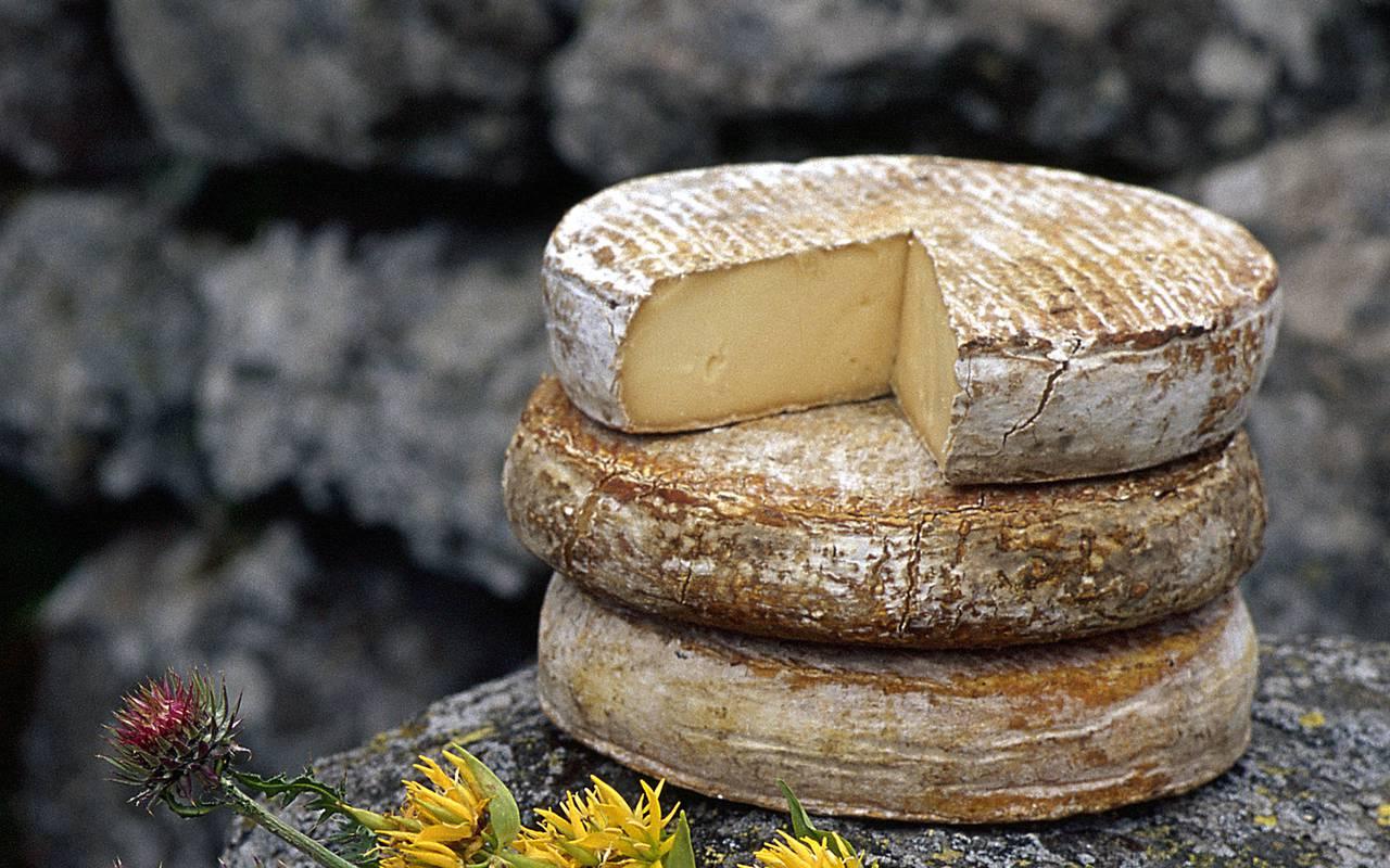 fromage auvergnat gastronomie